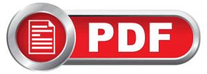 Descargar PDF Programa de Coaching