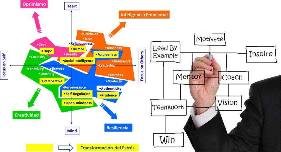 Modelo +Lead-Map (c)