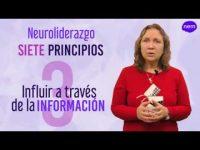 Aproximación al Neuroliderazgo. Definición