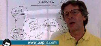 Master Practitioner PNL Mod1