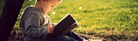 Neuroeducación: un cambio en los modelos educativos tradicionales